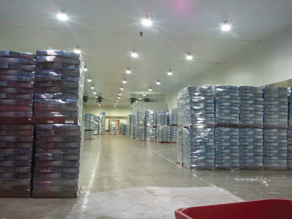 Cold storage warehouse uk